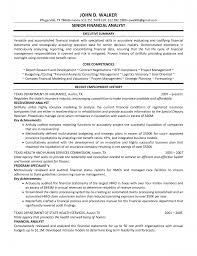 finance manager resume sample cipanewsletter automotive finance manager resume examples manager resume