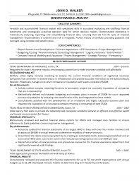 finance manager resume sample cipanewsletter automotive finance manager resume examples manager resume