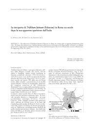 (PDF) La riscoperta di Trifolium latinum (Fabaceae) in Roma un ...
