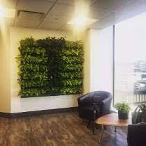 matrix solutions photo of plant wall buy matrix mid office