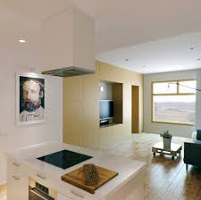 small kitchen living room combo design