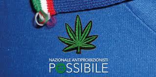 Risultati immagini per campagna legalizzazione cannabis