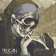 Pelican - Live At Dunk!fest 2016 [Limited Edition, 180 Gram Swamp ...