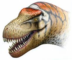 <b>T</b>. <b>Rex's</b> Little Cousin: New Pygmy Tyrannosaur Discovered in Alaska