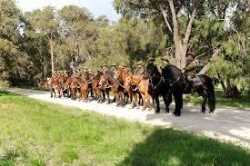 10th Light <b>Horse Bridle</b> Trail: Print Trail Information | Trails WA