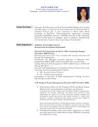Information Technology Resume Example  Sample IT Support Resumes Resume Examples  Curriculum Vitae Format Academic Resume Templates Objective Summary Of Qualifications Professional Background Skills