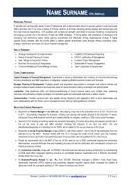 professional cv format for