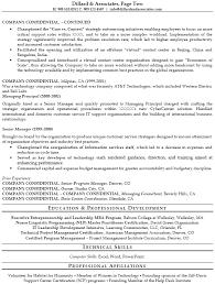 senior information technology professional resume example