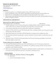 sample school nurse resume  template  template sample school nurse resume