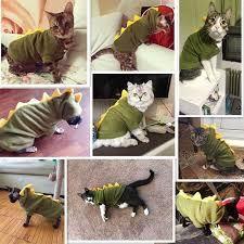 Clothing Suit <b>Pet Cosplay Costume</b> Cat with Hood Party Supplies ...