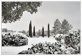 """Résultat de recherche d'images pour """"sous la neige"""""""