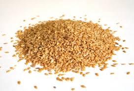 Resultado de imagen de imagen de semillas de lino