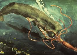 Giant <b>Squid vs</b>. Sperm <b>Whale</b> | Smithsonian Ocean