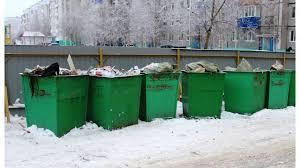 Жительница Новороссийска нашла возле <b>мусорного контейнера</b> ...