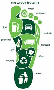 essay about reducing carbon footprint   essay for you    essay about reducing carbon footprint   image