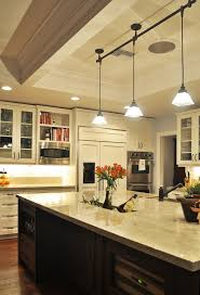 pendant track lighting kitchen traditional with cabinet front refrigerator coffered blue track lighting