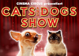 CATS AND DOGS :: CinemaCircus