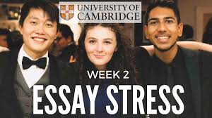 essay on stress a study on stress management tools and strategies essay write a study on stress management tools and strategies essay write