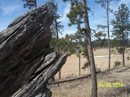 lots and land nature lovers delight 22 31 acres bordering usfs land no covenants live water rock outcroppings good access