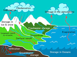 powerschool learning   mrs  staffords th grade science   condensationdiagram of the water cycle