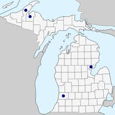 Juncus inflexus - Michigan Flora