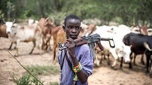 Image result for images for fulani herdsmen