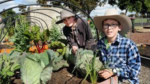 healthy and green at fork to fork photos the wimmera mail times horsham west primary schoolchool students ben foster and jake waterfield at fork to fork at horsham