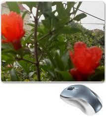 "<b>Коврик для мышки</b> ""Цветок граната"" #2681673 от Лана - <b>Printio</b> ..."