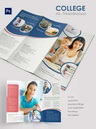 brochure word document brochure template word document brochure template pictures medium size