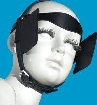 Image result for horse blinders