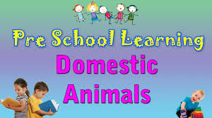 domestic animals pre school hindi learn hindi for kids learn domestic animals pre school hindi learn hindi for kids learn hindi for beginners