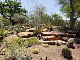 Image result for ethel m chocolate gardens