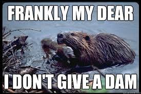 Uncaring Beaver memes | quickmeme via Relatably.com