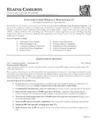 construction senior project manager job description template construction senior project manager job description