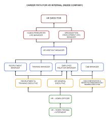 career path plan doc tk career path plan 23 04 2017