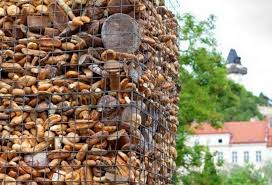 Image result for wasted bread