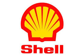Image result for shell damage nigeria