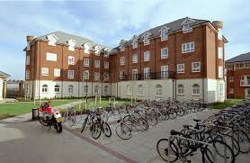 University of Surrey   The Student Room The Student Room internet tv boxes comparison essay