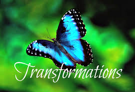 Image result for butterfly transformation
