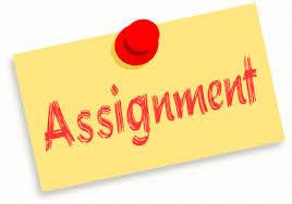 Assignment     AUTISM Assignment