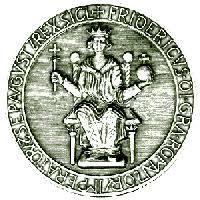 Risultati immagini per biblioteca federico ii