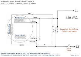 leeson wiring diagram wiring diagram schematics info electric motor wiring diagrams nodasystech com