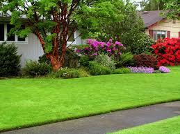 Достоинства газонов Images?q=tbn:ANd9GcTJdF4A8uZlImRj691pF7_n-N_y8Sk_WWbTe3b-OJyh8Fp_AZfr