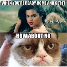 Selena Gomez Crying Meme, Rude, Mean Selena Gomez Memes   Teen.com via Relatably.com
