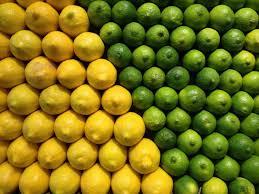 Lemon And Lime Kitchen Decor Lemon Lime Art Photo Kitchen Decor Bar Decor By Jessicareisspix