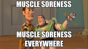 MUSCle soreness muscle soreness everywhere - Everywhere - quickmeme via Relatably.com