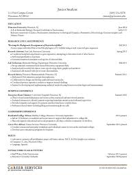 sample resumes resume cv design sample resume sample resumes 9