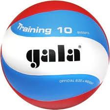 Спорт Бюро. <b>Мяч волейбольный GALA Training</b> 10