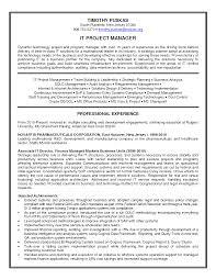 program coordinator resume samples  resume templates federal    program manager resumes sample senior project resume