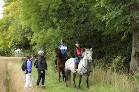 <b>Horse riding</b> | Scottish Outdoor Access Code